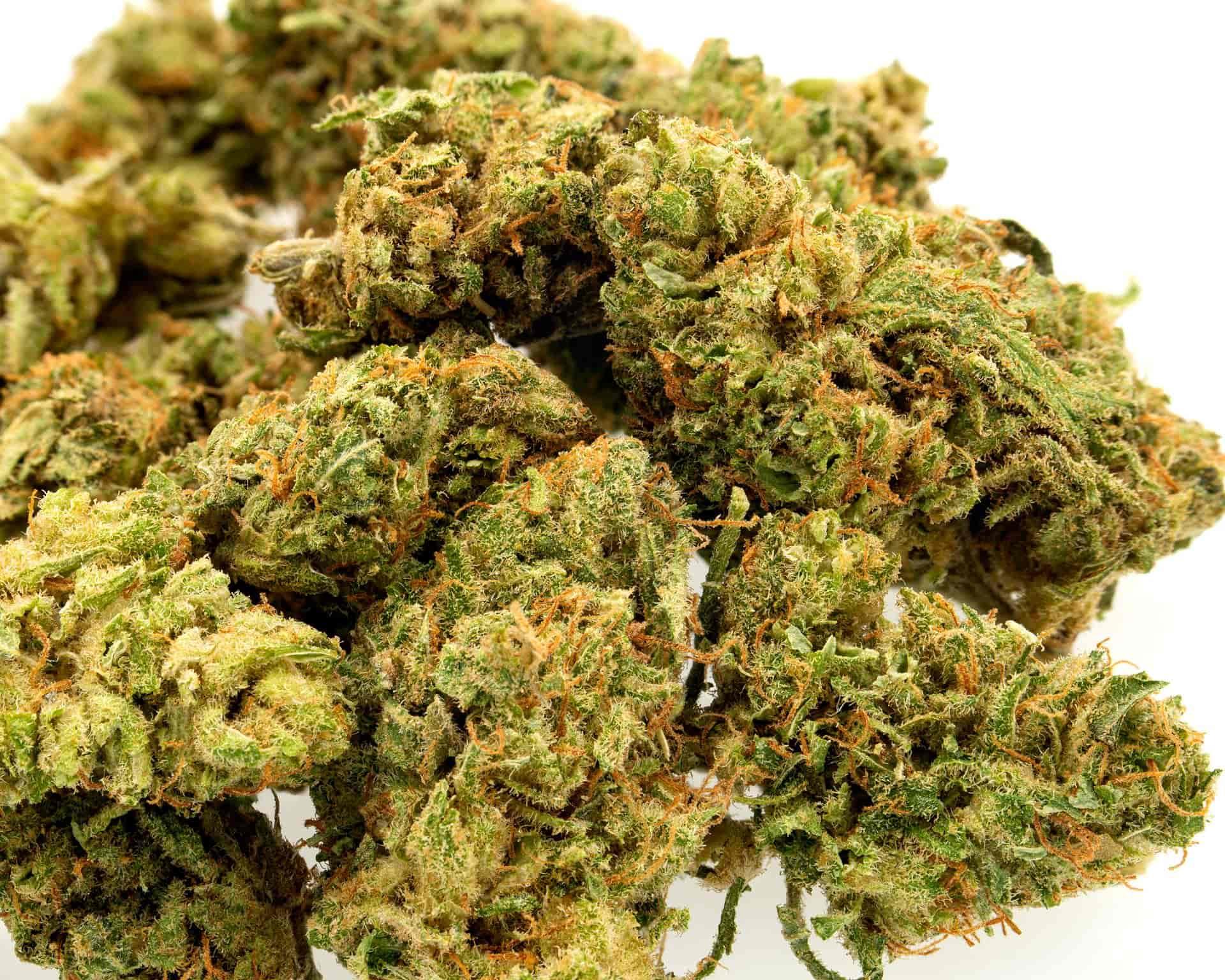 Sweet Grass CBD Hemp Flower for Sale Online