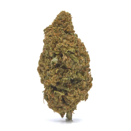 Blue Cheese CBD hemp flower for sale online