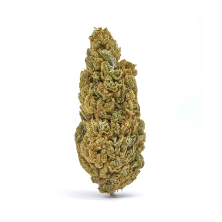 casino cookies cbd hemp flower for sale