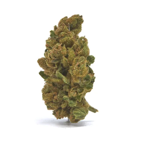 Dutch Delight CBD hemp flower for sale online