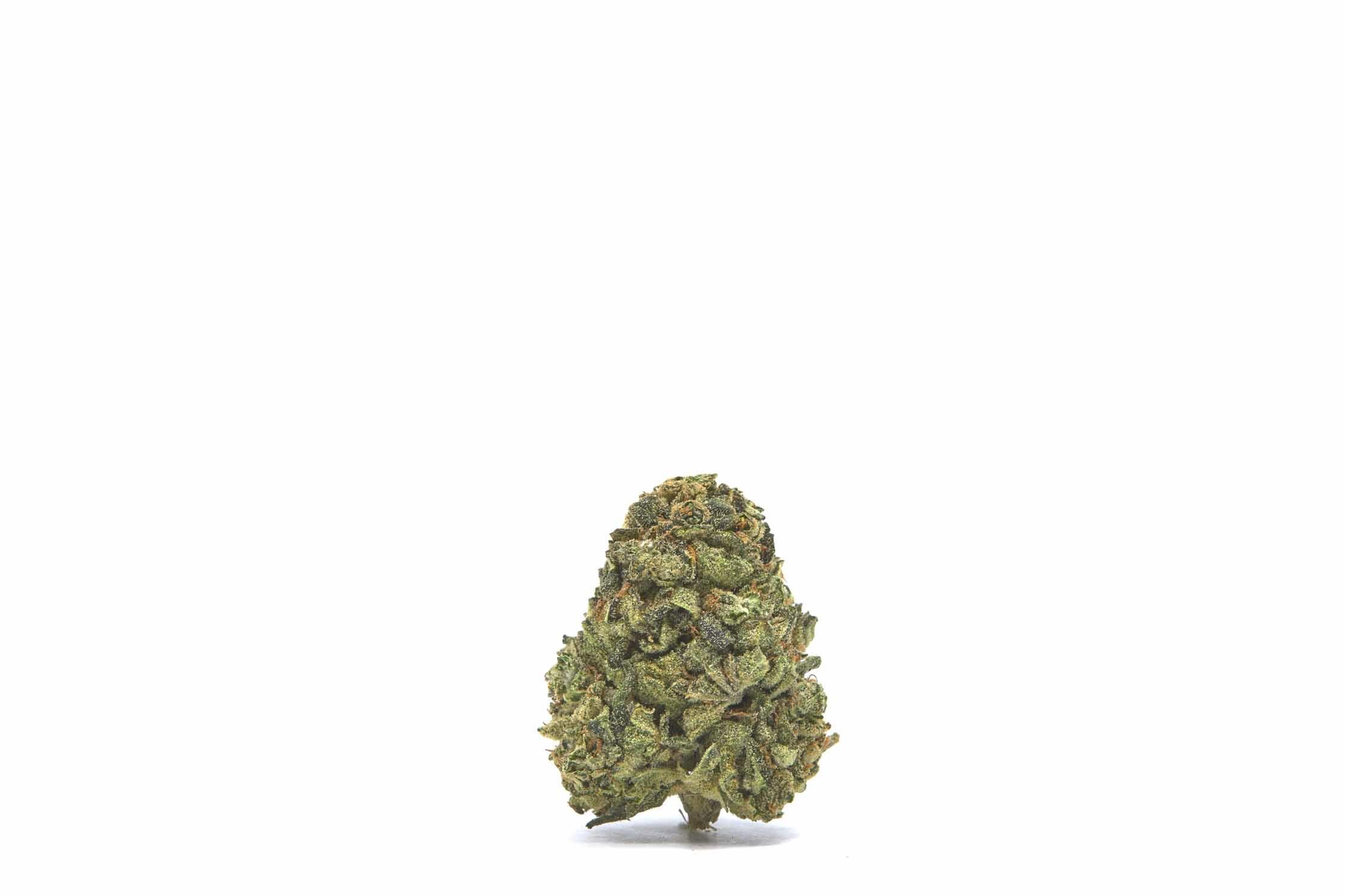 Key Lime Pie CBD hemp flower for sale online