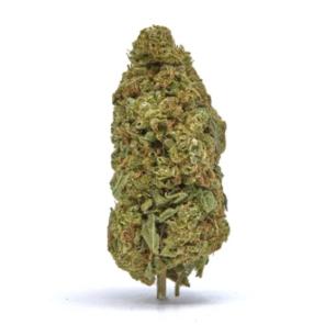 Starmaster Kush CBD hemp flower for sale online