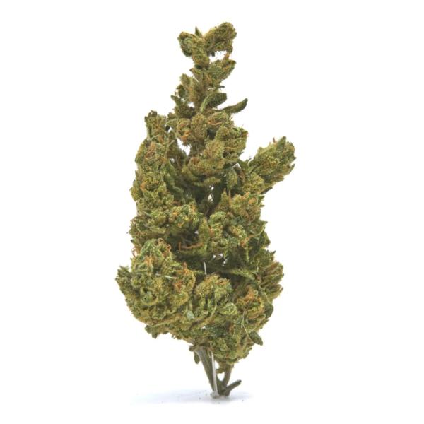 Wife CBD Hemp Flower for Sale Online