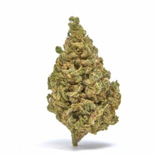 White Whale Fortified Delta 8 CBD Flower