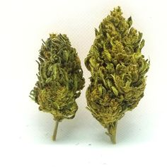 Organic CBD Nugs Hemp Flower