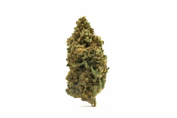 Gamma Kush CBD Hemp Flower