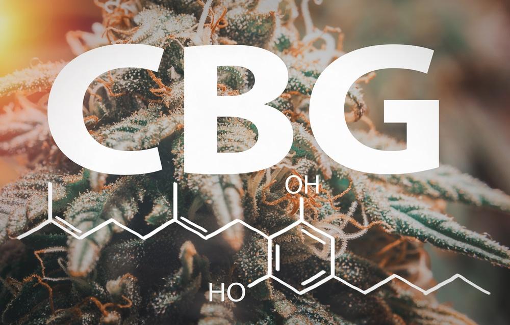 CBN vs CBG: Everything you need to know