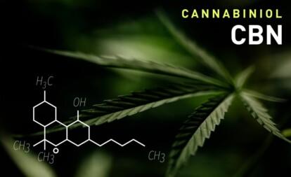 Best CBN cannabis strains