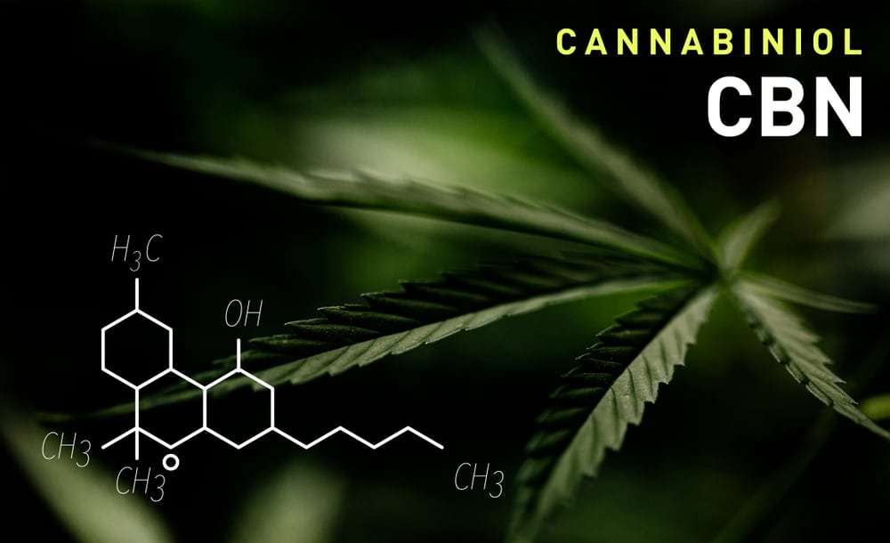 Best CBN Strains – Top 8 Cannabinol Strains to choose from