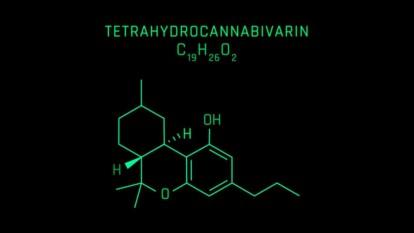 Tetrahydrocannabivarin