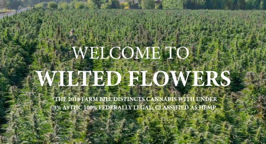 Wilted Flowers brand review